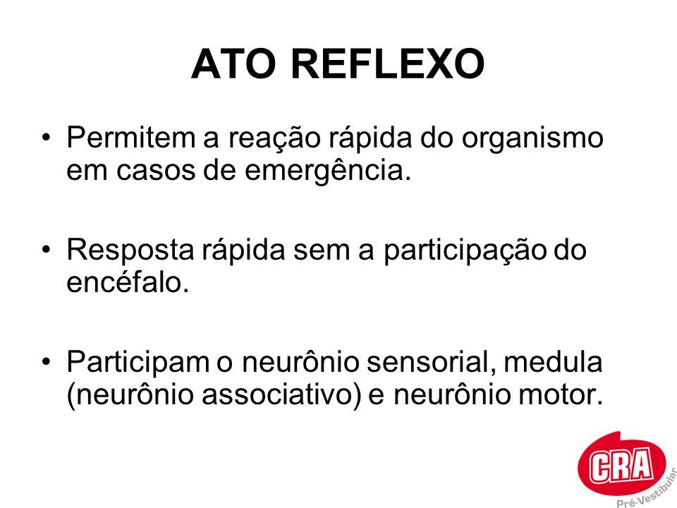 ATO REFLEXO Permitem a reação rápida do organismo em casos de emergência. Resposta rápida sem a participação do encéfalo. Participam o neurônio sensor