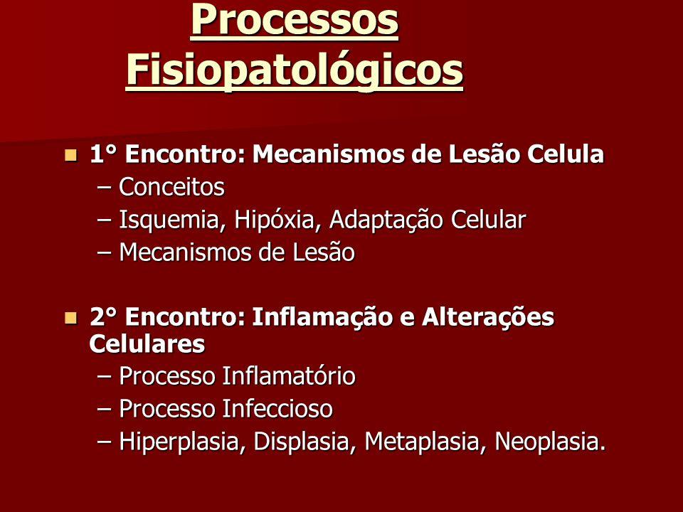 Processos Fisiopatológicos 1° Encontro: Mecanismos de Lesão Celula 1° Encontro: Mecanismos de Lesão Celula –Conceitos –Isquemia, Hipóxia, Adaptação Ce