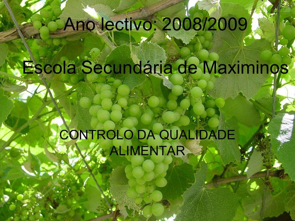 Escola Secundária de Maximinos CONTROLO DA QUALIDADE ALIMENTAR Ano lectivo: 2008/2009