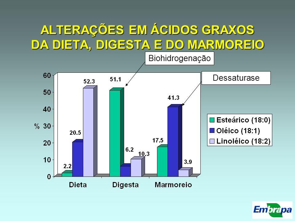 ALTERAÇÕES EM ÁCIDOS GRAXOS DA DIETA, DIGESTA E DO MARMOREIO BiohidrogenaçãoDessaturase