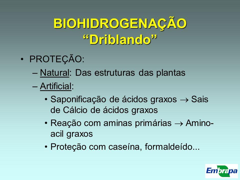 BIOHIDROGENAÇÃO Driblando PROTEÇÃO: –Natural: Das estruturas das plantas –Artificial: Saponificação de ácidos graxos Sais de Cálcio de ácidos graxos R
