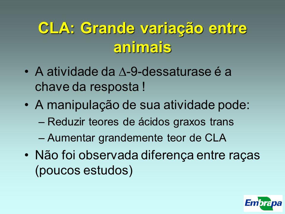 CLA: Grande variação entre animais A atividade da -9-dessaturase é a chave da resposta ! A manipulação de sua atividade pode: –Reduzir teores de ácido