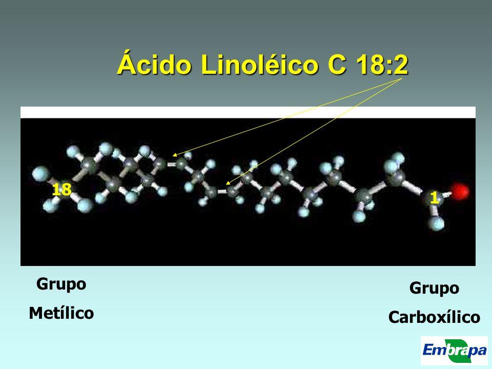 Ácido Linoléico C 18:2 Grupo Carboxílico Grupo Metílico 1 18