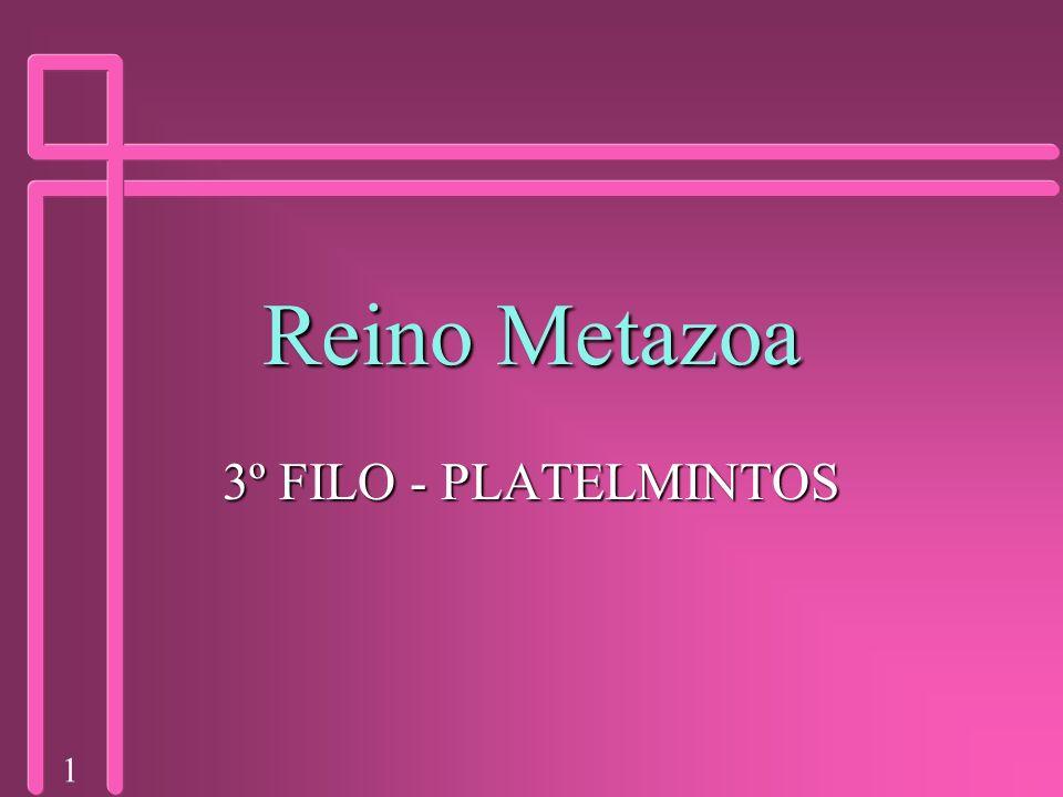 1 Reino Metazoa 3º FILO - PLATELMINTOS