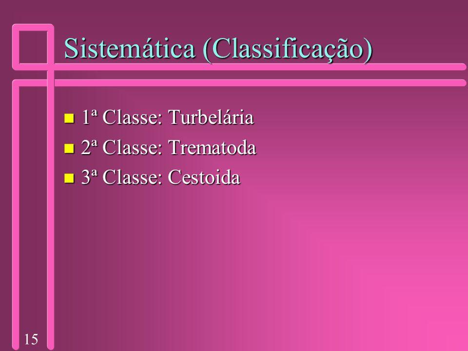 15 Sistemática (Classificação) n 1ª Classe: Turbelária n 2ª Classe: Trematoda n 3ª Classe: Cestoida