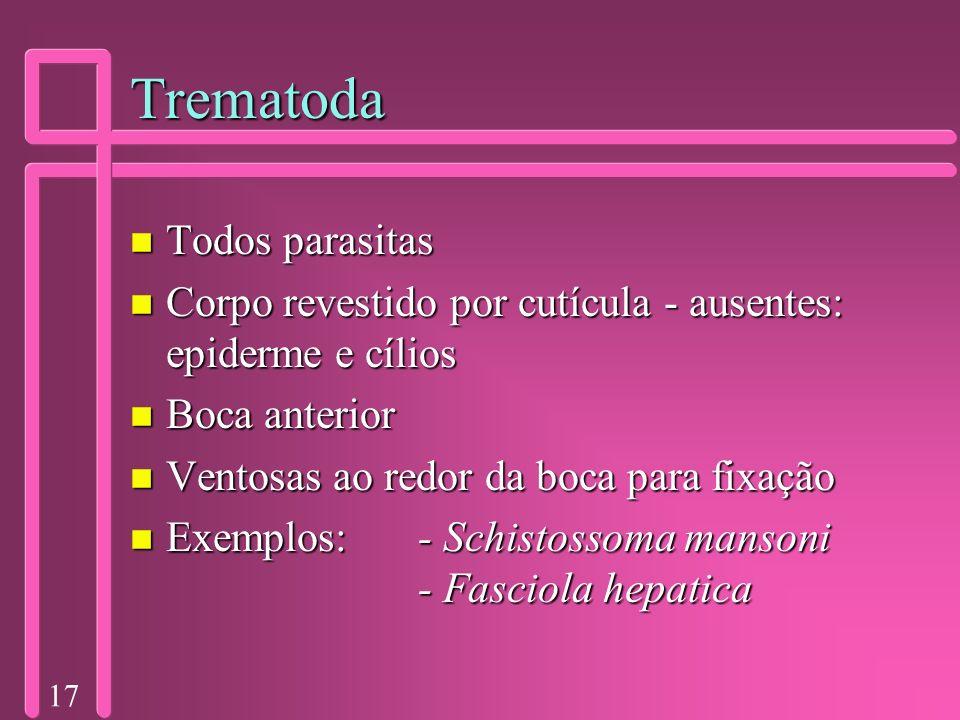 17 Trematoda n Todos parasitas n Corpo revestido por cutícula - ausentes: epiderme e cílios n Boca anterior n Ventosas ao redor da boca para fixação n