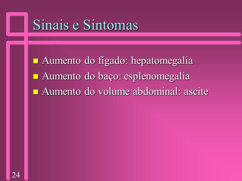 24 Sinais e Sintomas n Aumento do fígado: hepatomegalia n Aumento do baço: esplenomegalia n Aumento do volume abdominal: ascite