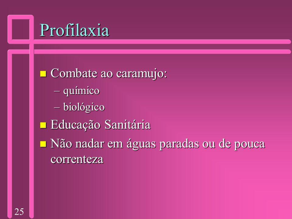 25 Profilaxia n Combate ao caramujo: –químico –biológico n Educação Sanitária n Não nadar em águas paradas ou de pouca correnteza