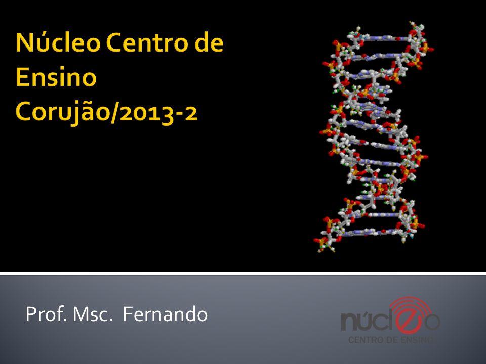Prof. Msc. Fernando