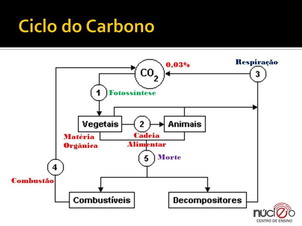 Exercício 1: O Carbono é o elemento vital na constituição da matéria orgânica e é reciclado na biosfera através de vários processos.