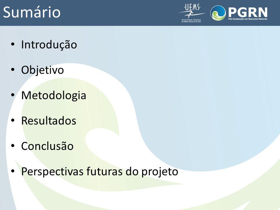 Sumário Introdução Objetivo Metodologia Resultados Conclusão Perspectivas futuras do projeto