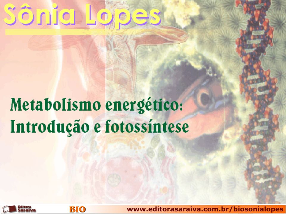 Exotérmica Endotérmica Nível de energia Reagentes Produtos Reagentes Produtos