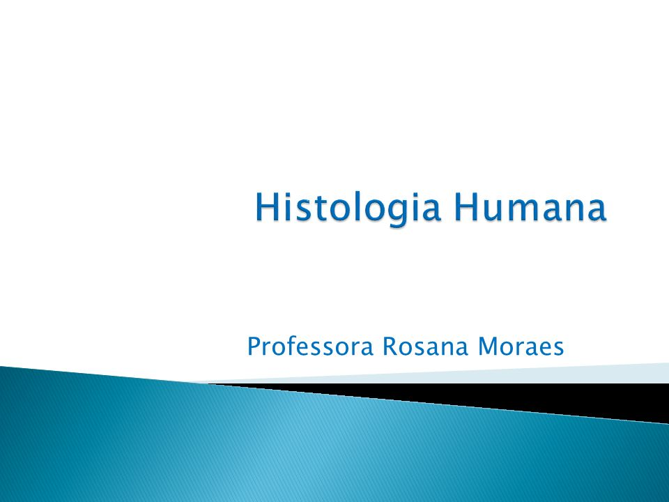 Professora Rosana Moraes