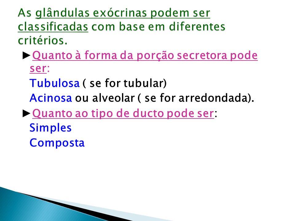 Quanto à forma da porção secretora pode ser: Tubulosa ( se for tubular) Acinosa ou alveolar ( se for arredondada). Quanto ao tipo de ducto pode ser: S