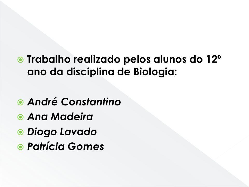 Trabalho realizado pelos alunos do 12º ano da disciplina de Biologia: André Constantino Ana Madeira Diogo Lavado Patrícia Gomes