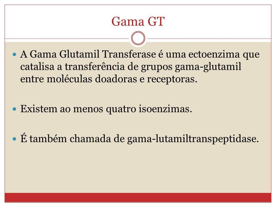 Gama GT A Gama Glutamil Transferase é uma ectoenzima que catalisa a transferência de grupos gama-glutamil entre moléculas doadoras e receptoras. Exist