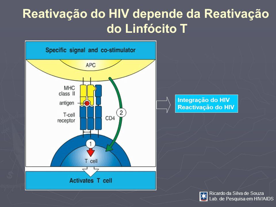 Ricardo da Silva de Souza Lab. de Pesquisa em HIV/AIDS Integração do HIV Reactivação do HIV Reativação do HIV depende da Reativação do Linfócito T