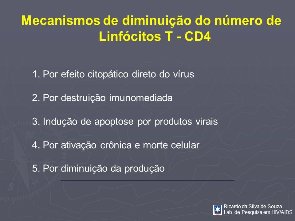 Ricardo da Silva de Souza Lab. de Pesquisa em HIV/AIDS Mecanismos de diminuição do número de Linfócitos T - CD4 1. Por efeito citopático direto do vír