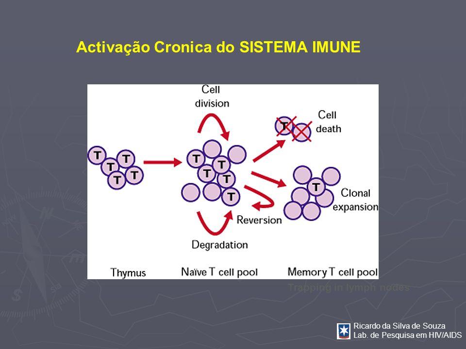 Ricardo da Silva de Souza Lab. de Pesquisa em HIV/AIDS Activação Cronica do SISTEMA IMUNE Trapping in lymph nodes