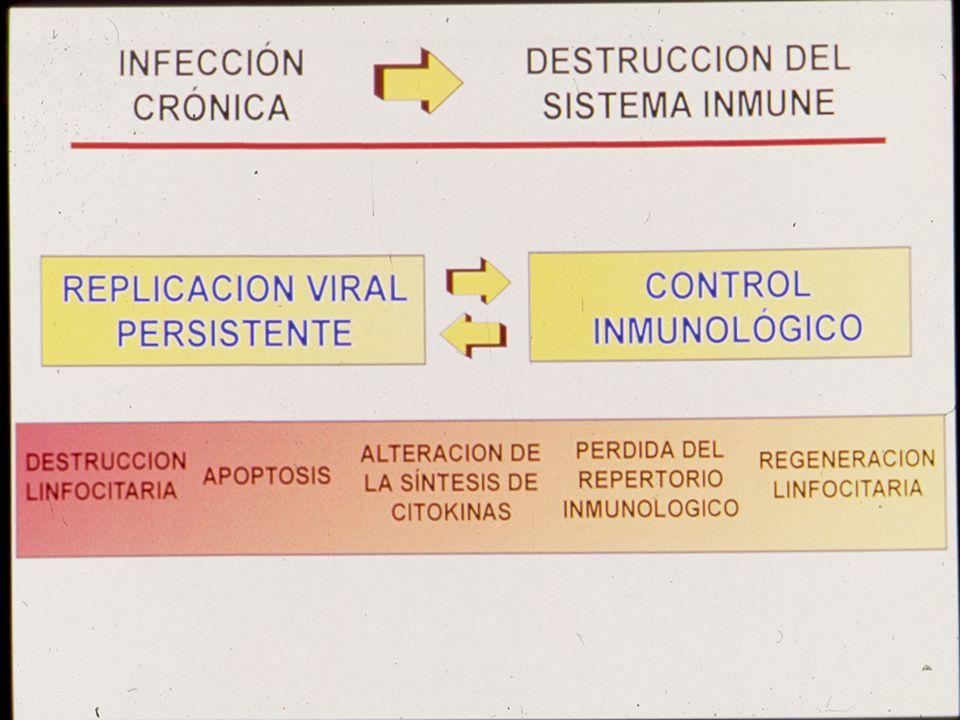 Ricardo da Silva de Souza Lab. de Pesquisa em HIV/AIDS