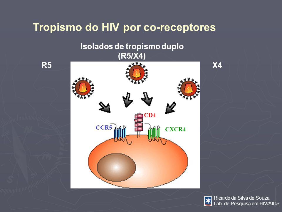 Ricardo da Silva de Souza Lab. de Pesquisa em HIV/AIDS Tropismo do HIV por co-receptores R5 X4 Isolados de tropismo duplo (R5/X4) CCR5 CXCR4 CD4