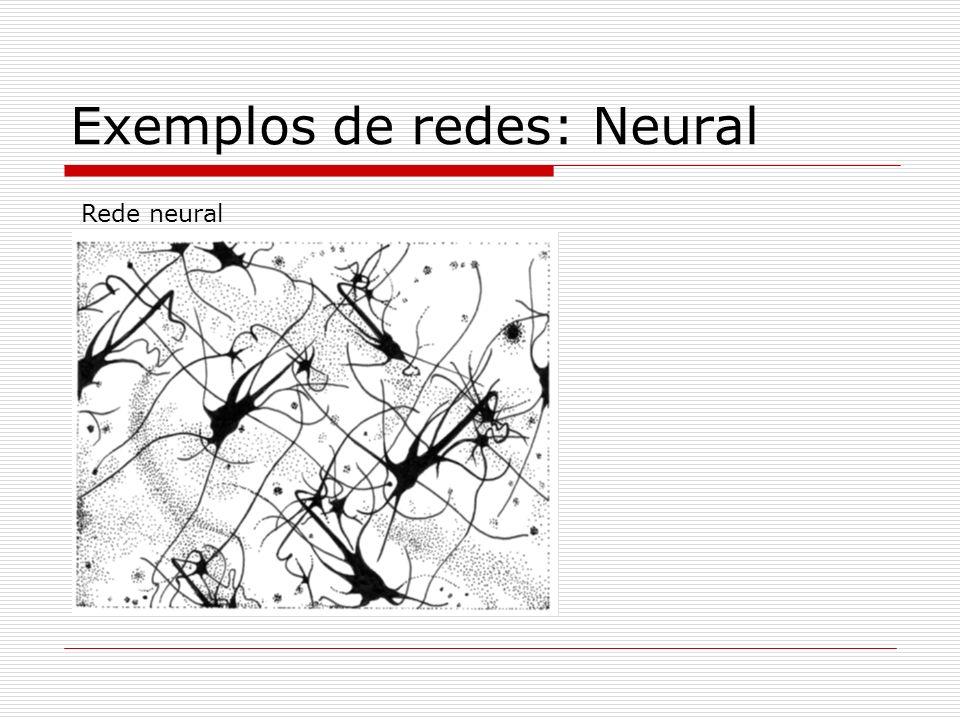 Exemplos de redes: Neural Rede neural