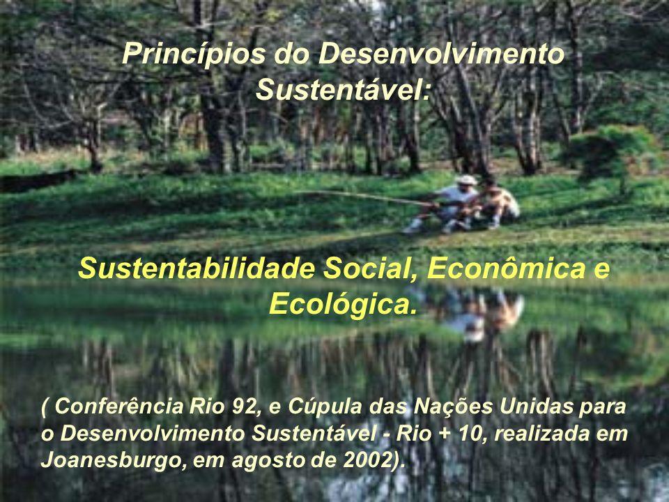 Princípios do Desenvolvimento Sustentável: Sustentabilidade Social, Econômica e Ecológica. ( Conferência Rio 92, e Cúpula das Nações Unidas para o Des