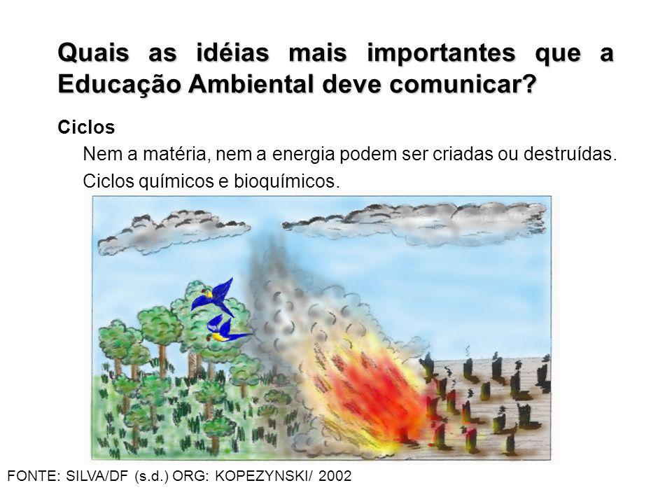 Ciclos Nem a matéria, nem a energia podem ser criadas ou destruídas. Ciclos químicos e bioquímicos. Quais as idéias mais importantes que a Educação Am