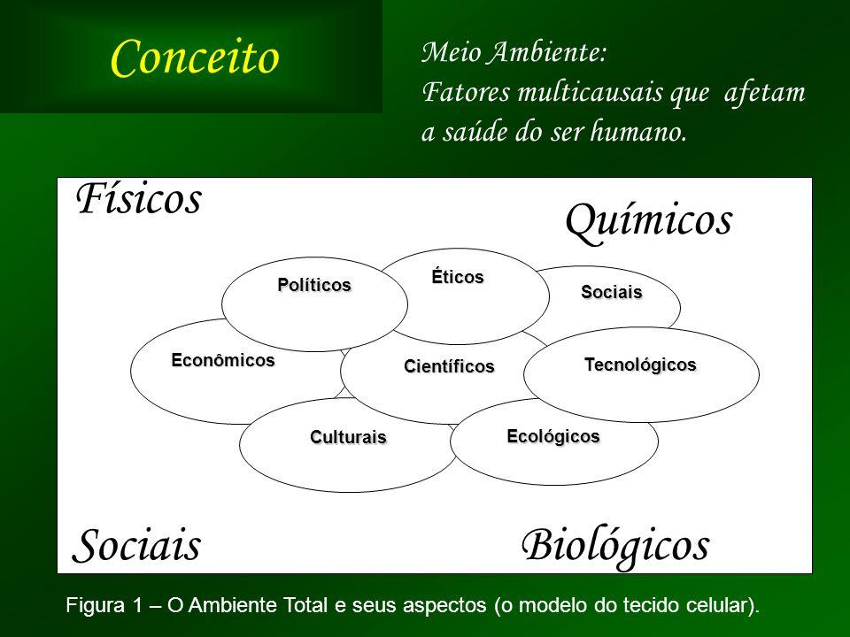 ConceitoSociais Econômicos Culturais Científicos Éticos Políticos Ecológicos Tecnológicos Figura 1 – O Ambiente Total e seus aspectos (o modelo do tec