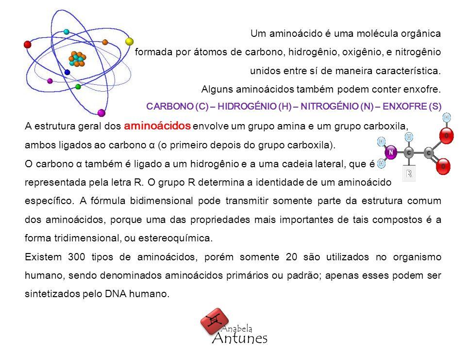 A A Antunes Anabela Um aminoácido é uma molécula orgânica formada por átomos de carbono, hidrogênio, oxigênio, e nitrogênio unidos entre sí de maneira