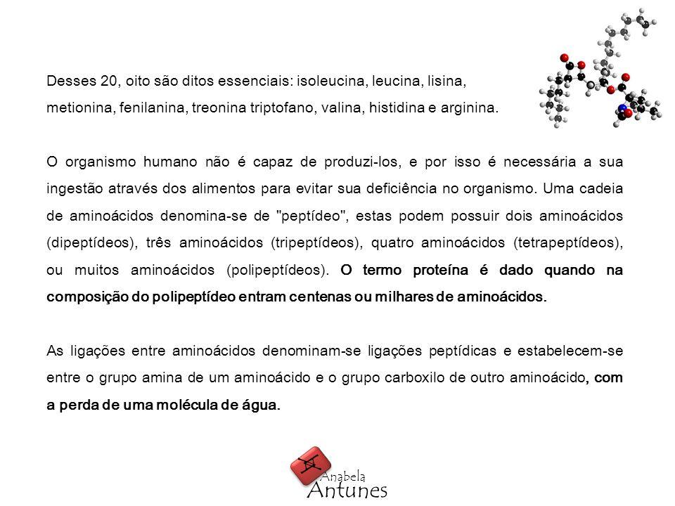 Quimicamente, os aminoácidos são pequenas moléculas, que agrupadas, formam as proteínas.
