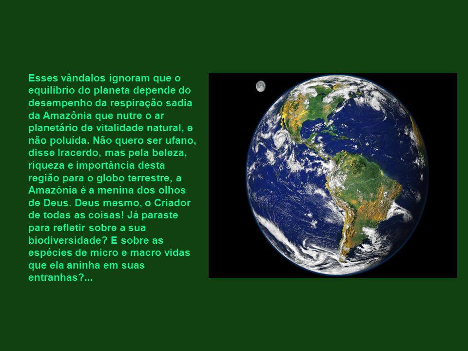 Esses vândalos ignoram que o equilíbrio do planeta depende do desempenho da respiração sadia da Amazônia que nutre o ar planetário de vitalidade natural, e não poluída.