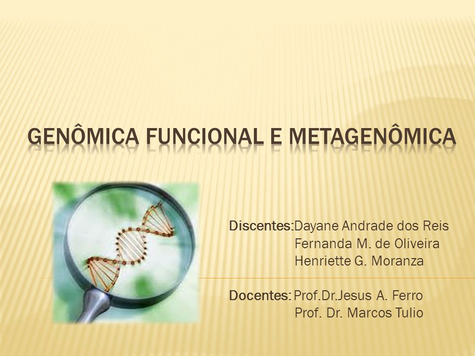 Discentes:Dayane Andrade dos Reis Fernanda M. de Oliveira Henriette G. Moranza Docentes: Prof.Dr.Jesus A. Ferro Prof. Dr. Marcos Tulio
