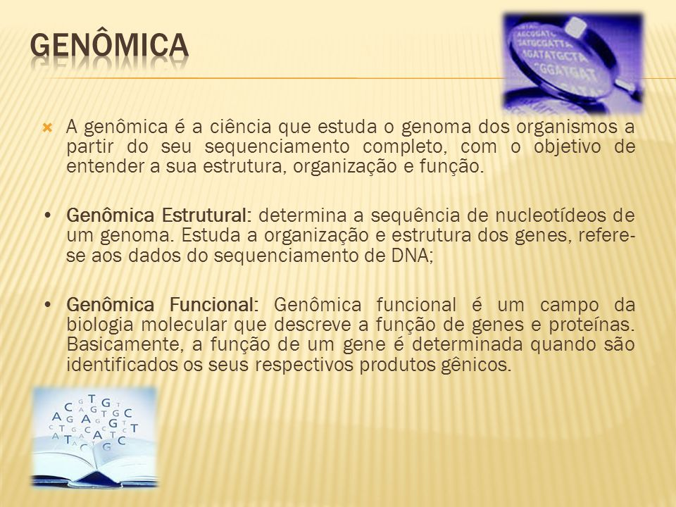 A genômica é a ciência que estuda o genoma dos organismos a partir do seu sequenciamento completo, com o objetivo de entender a sua estrutura, organiz