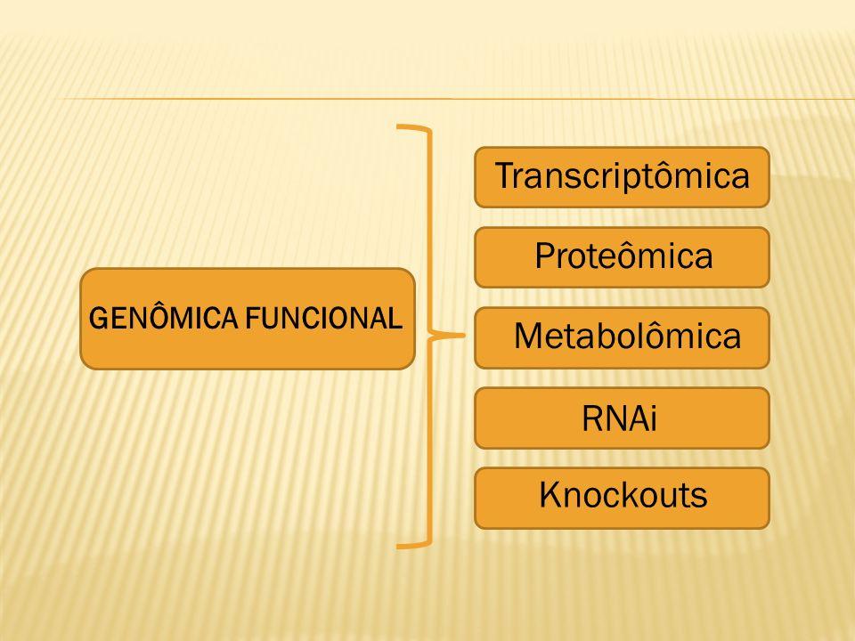 GENÔMICA FUNCIONAL Transcriptômica Proteômica Metabolômica RNAi Knockouts