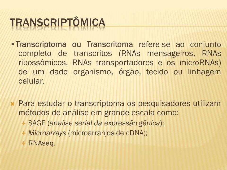 Transcriptoma ou Transcritoma refere-se ao conjunto completo de transcritos (RNAs mensageiros, RNAs ribossômicos, RNAs transportadores e os microRNAs)