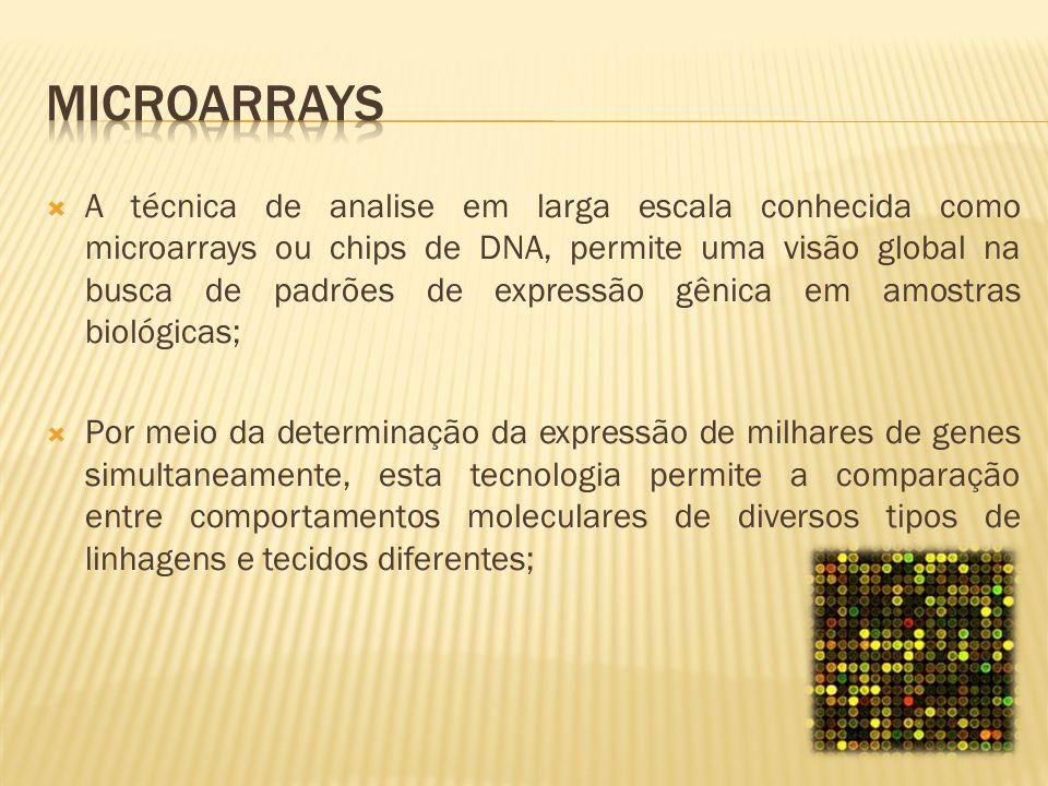 A técnica de analise em larga escala conhecida como microarrays ou chips de DNA, permite uma visão global na busca de padrões de expressão gênica em a
