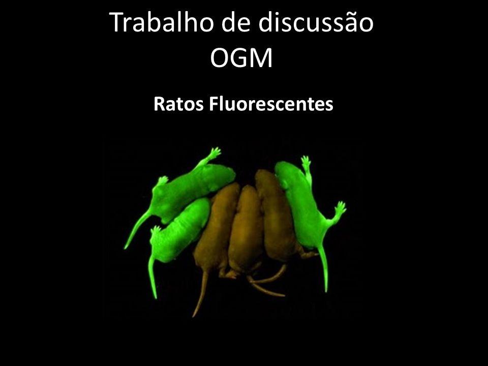 Trabalho de discussão OGM Ratos Fluorescentes