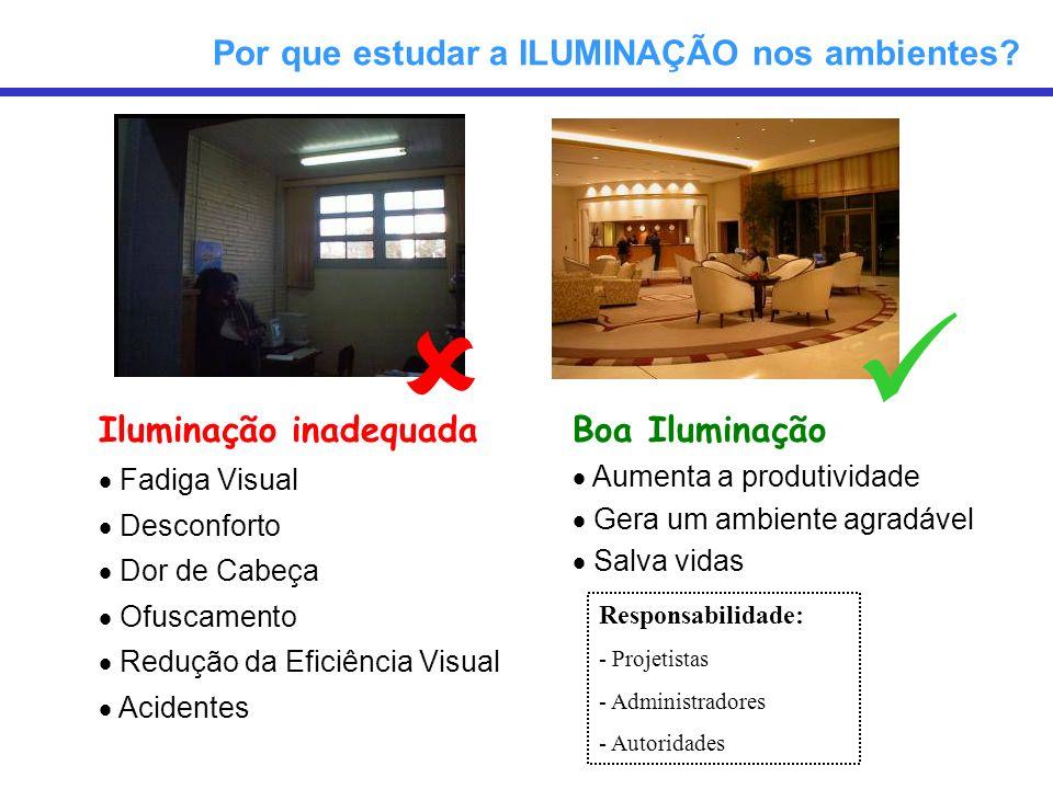 Iluminação inadequada Fadiga Visual Desconforto Dor de Cabeça Ofuscamento Redução da Eficiência Visual Acidentes Por que estudar a ILUMINAÇÃO nos ambi
