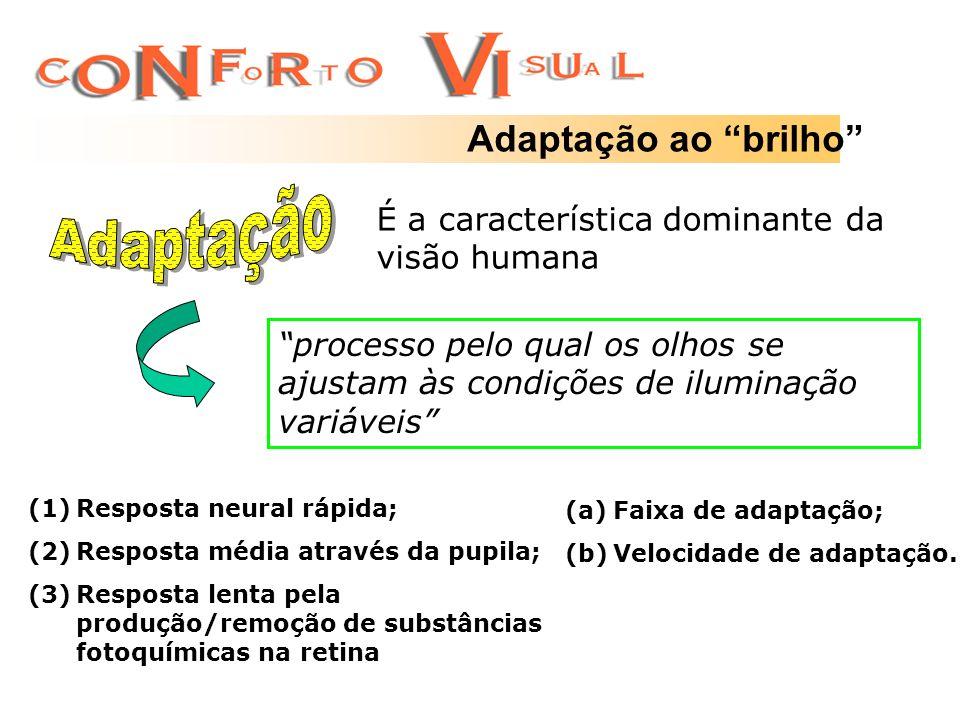 Adaptação ao brilho É a característica dominante da visão humana processo pelo qual os olhos se ajustam às condições de iluminação variáveis (1)Respos