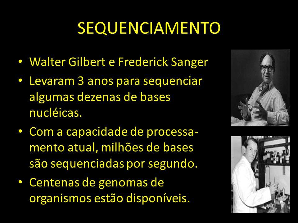 SEQUENCIAMENTO Walter Gilbert e Frederick Sanger Levaram 3 anos para sequenciar algumas dezenas de bases nucléicas.