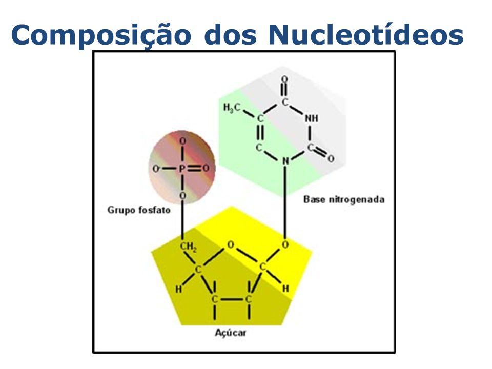 RESOLVA : 24.01) UFSC 2002- A revista Época, em 30/07/2001, anunciou em sua capa: O DNA não falha.