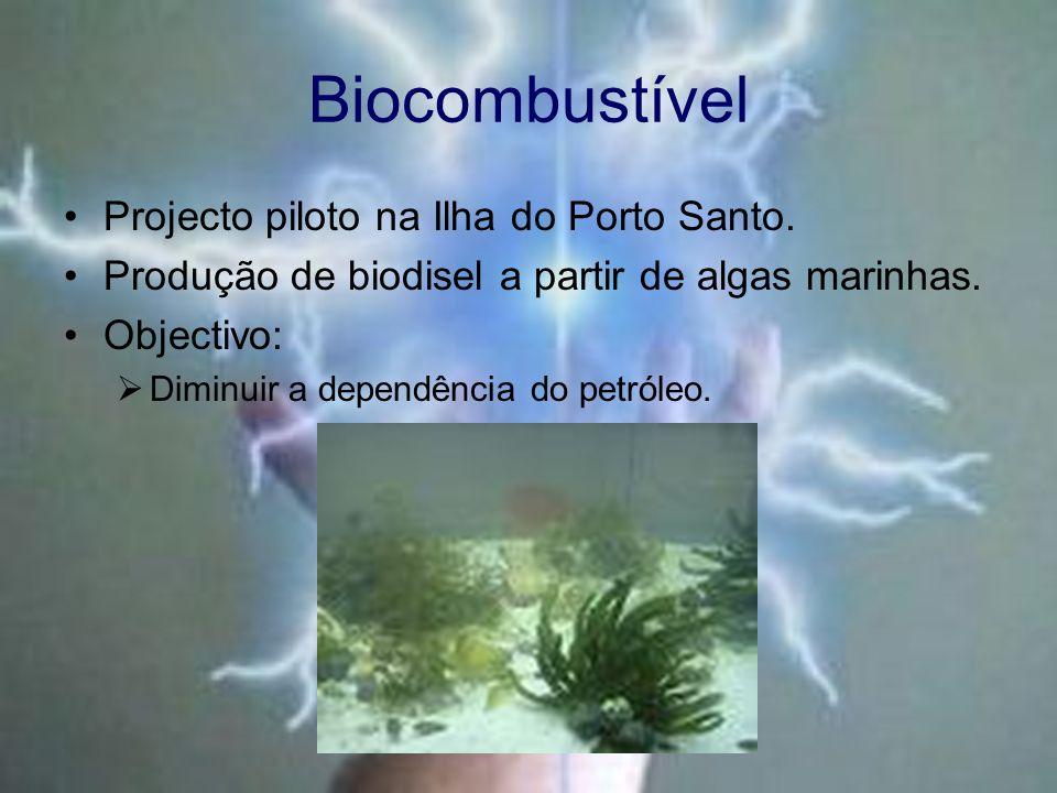 Biocombustível Projecto piloto na Ilha do Porto Santo. Produção de biodisel a partir de algas marinhas. Objectivo: Diminuir a dependência do petróleo.