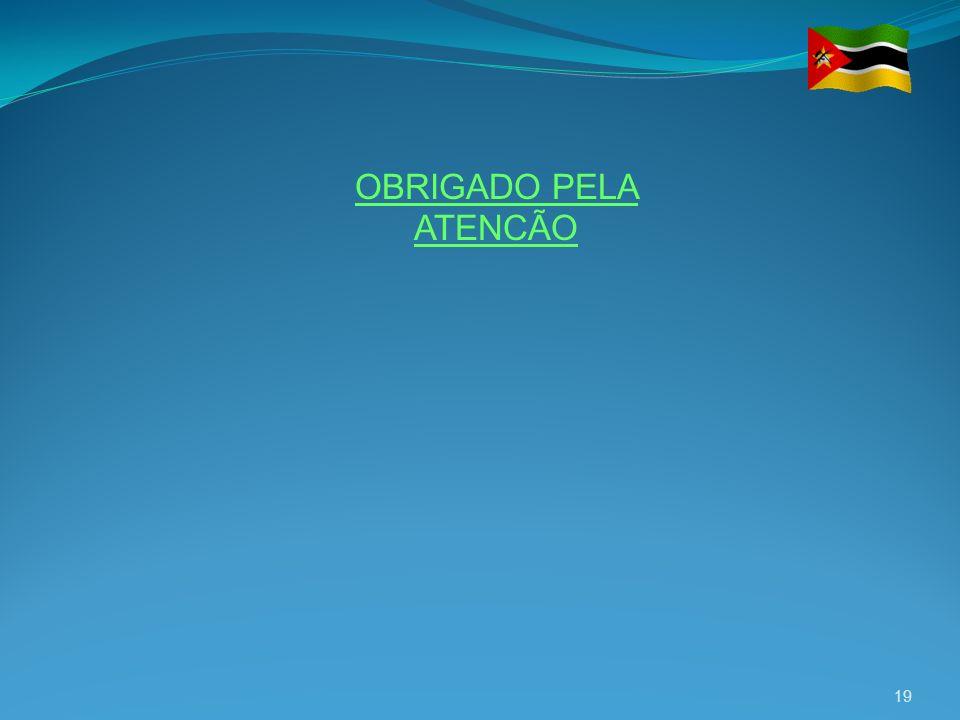 19 OBRIGADO PELA ATENCÃO
