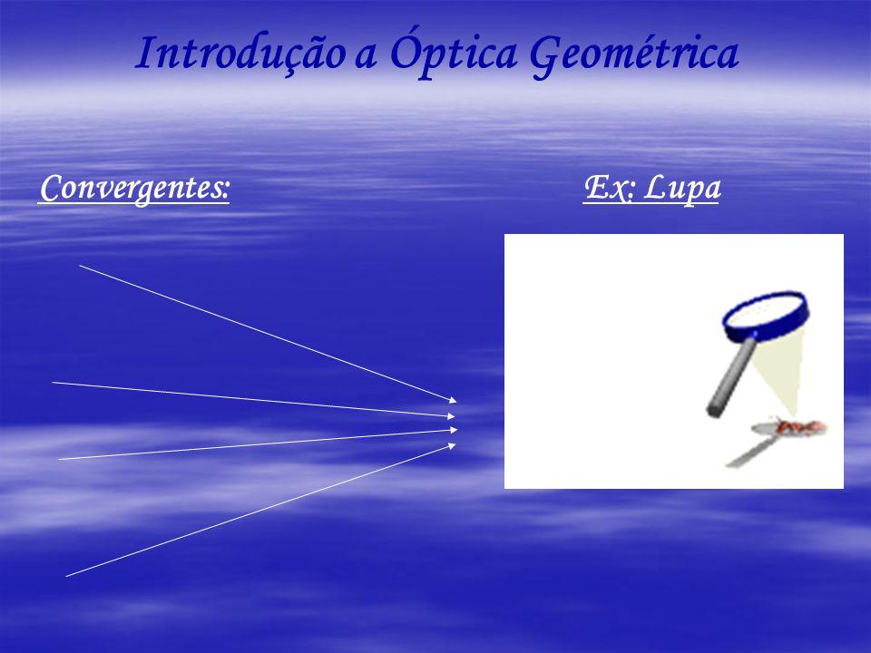Introdução a Óptica Geométrica Convergentes: Ex: Lupa