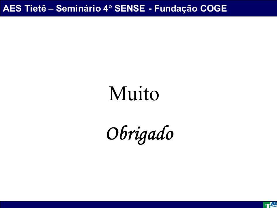 AES Tietê – Seminário 4 SENSE - Fundação COGE Daniel Marques dos Santos Muito Obrigado