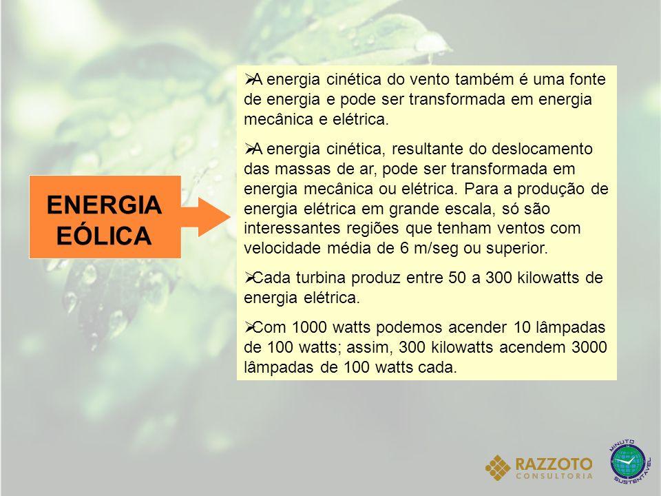 ENERGIA EÓLICA A energia cinética do vento também é uma fonte de energia e pode ser transformada em energia mecânica e elétrica. A energia cinética, r