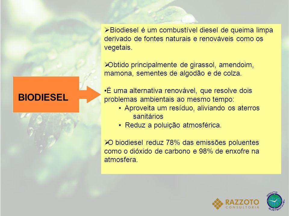 BIODIESEL Biodiesel é um combustível diesel de queima limpa derivado de fontes naturais e renováveis como os vegetais. Obtido principalmente de girass