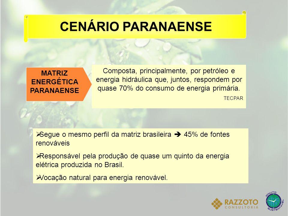CENÁRIO PARANAENSE Segue o mesmo perfil da matriz brasileira 45% de fontes renováveis Responsável pela produção de quase um quinto da energia elétrica