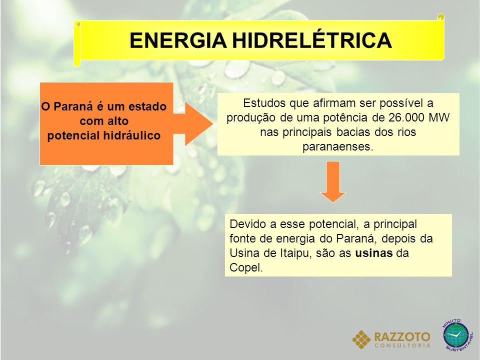 ENERGIA HIDRELÉTRICA O Paraná é um estado com alto potencial hidráulico Devido a esse potencial, a principal fonte de energia do Paraná, depois da Usi